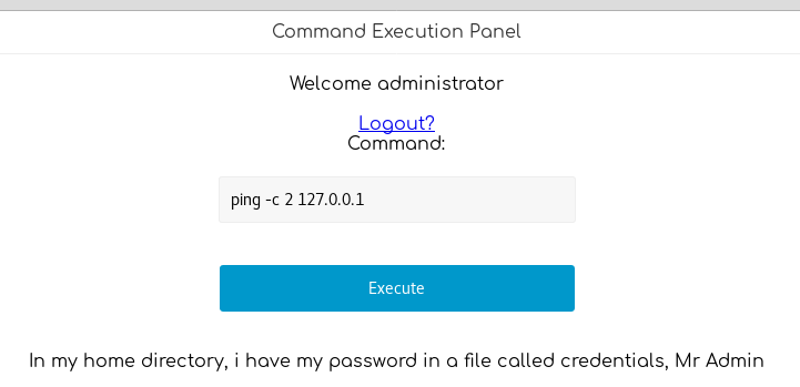 Command Execution Panel